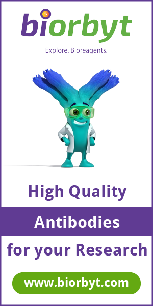 High Quality Antibodies for Your Research